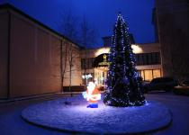Новогодний вход в отель
