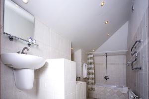 Ванная мансарды с кухней