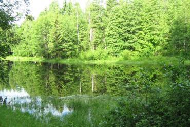 Брестская область, Обище виды