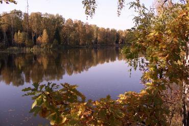 Московская область, Общие виды