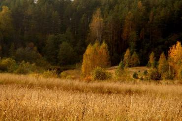 Тверская область, Общие виды