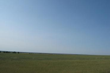 Курганская область, Общие виды