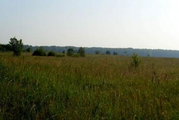 Смоленская область, Общие виды