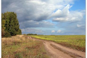 Новосибирская область, Общие виды