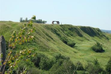 Рязанская область, Общие виды