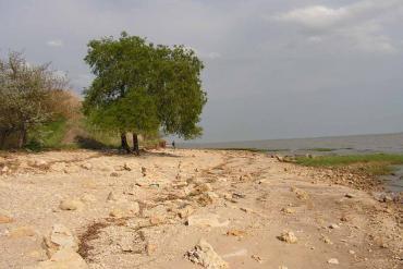 Азовское море, Общие виды