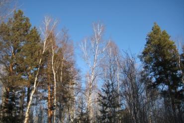 Курорты и санатории Красноярского края, Общие виды