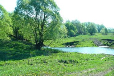 Пензенская область, Общие виды