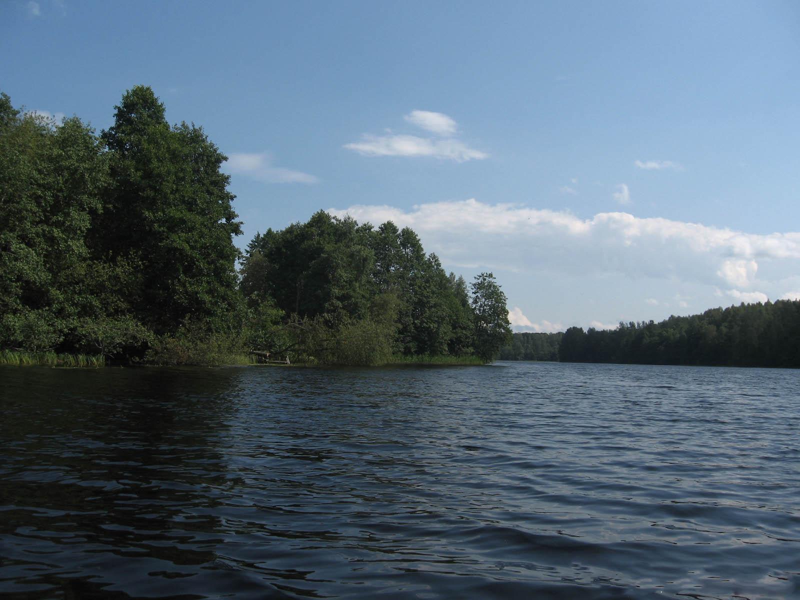 Рыбалка в плюсском районе