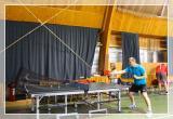 Snegirek nastolnyi tennis