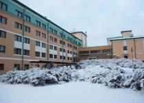Розарий за отелем зимой