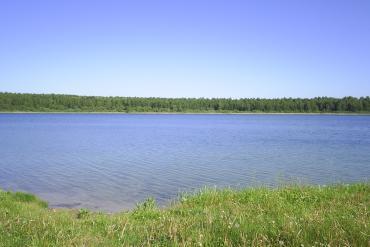 Омская область, Общие виды