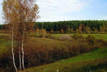 Курская область, Общие виды